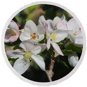 Lovely Apple Blossoms Round Beach Towel