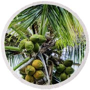 Lovely Bunch Of Coconuts Round Beach Towel