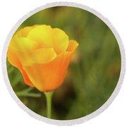 Lovely Buttercup Flower. Round Beach Towel
