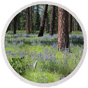 Lovely Lupine In The Mountains Round Beach Towel