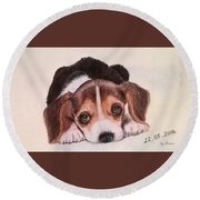 Lovely Pet Round Beach Towel