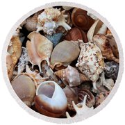 Lovely Seashells Round Beach Towel