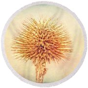 Lovely Spikes Round Beach Towel