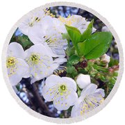 Lovely Spring Round Beach Towel