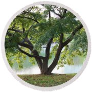 Lovely Tokyo Tree With Pond Round Beach Towel