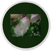 Lovely White And Pink Flowers Round Beach Towel