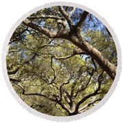 Low Angle View Of Trees In A Park Round Beach Towel