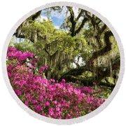 Lowcountry South Carolina Spring Azalea And Live Oak Round Beach Towel