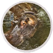 Lu The Homossasa Hippo I I Round Beach Towel