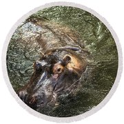 Lu The Homosassa Hippo Round Beach Towel