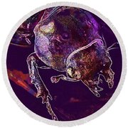 Lucane Kite Female Darling Beetle  Round Beach Towel