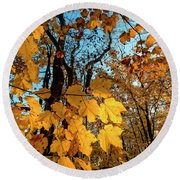 Luminous Leaves Round Beach Towel