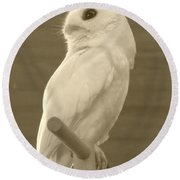 Luna The Rescued White Leucistic Eastern Screech Owl In Sepia Round Beach Towel
