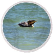 Lunchtime Pelican  Round Beach Towel