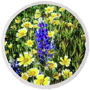 Lupine Amidst Tidy Tips Round Beach Towel