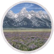 Lupine And Grand Tetons Round Beach Towel by Sandra Bronstein