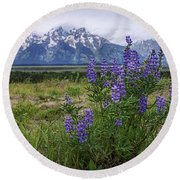 Lupine Beauty Round Beach Towel
