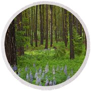 Lupine Carpet Round Beach Towel