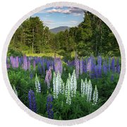 Lupine In The Valley Round Beach Towel