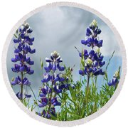 Lupines Against The Sky Round Beach Towel