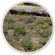 Lupines And A Log Round Beach Towel