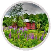 Lupines And The Red Barn Round Beach Towel
