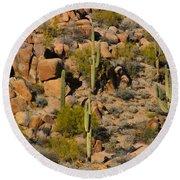 Lush Arizona Desert Landscape Round Beach Towel