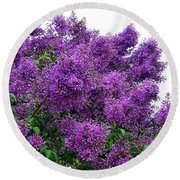 Luxurious Lilacs Round Beach Towel