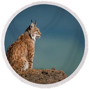 Lynx In Profile On Rock Looking Up Round Beach Towel