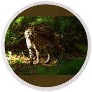 Lynx Rufus Round Beach Towel