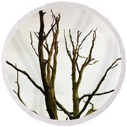 Macabre Leafless Tree Round Beach Towel