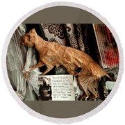 Macabre Mummified Cat - Halloween Round Beach Towel