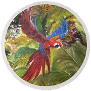 Macaw Parrot 3 Round Beach Towel