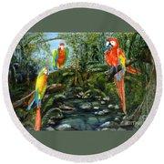 Macaws Round Beach Towel
