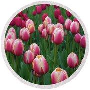 Mackinac Island Tulips 10681 Round Beach Towel
