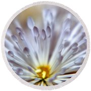 Macro Flower 3 Round Beach Towel