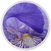 Macro Irises Close Up Purple Iris Flowers Giclee Art Prints Baslee Troutman Round Beach Towel