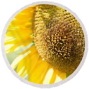 Macro Photography Of Sunflower Round Beach Towel