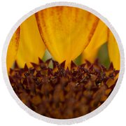 Macro Sunflower Round Beach Towel