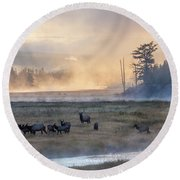 Madison Morning Round Beach Towel