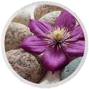 Clematis Flower On Meditation Stones Round Beach Towel
