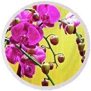 Magenta Orchid 3 Round Beach Towel
