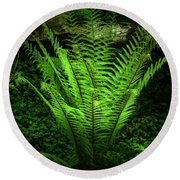 Magic Fern Round Beach Towel