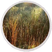 Magical Light On The Marsh Round Beach Towel