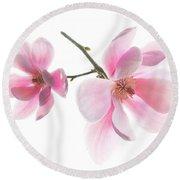 Magnolia Is The Harbinger Of Spring. Round Beach Towel