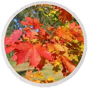 Magnificent Maple Leaves Round Beach Towel
