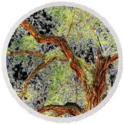 Magnificent Tree Round Beach Towel