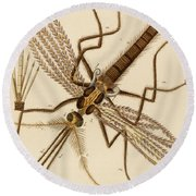 Magnified Mosquito Round Beach Towel