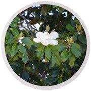 Magnolia Blooming 3 Round Beach Towel