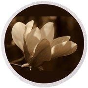 Magnolia Blossom Bw Round Beach Towel